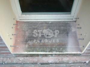 cables tensats anticoloms stop plagues